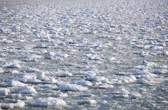 Шишки frazil снега и льда на поверхности замерзать rive Стоковые Фотографии RF