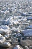 Шишки frazil снега и льда на поверхности замерзать rive Стоковые Изображения RF