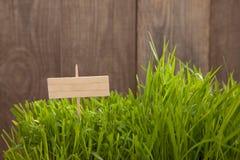Шильдик на предпосылке деревянных планок, свежей зеленой лужайке n травы Стоковая Фотография RF