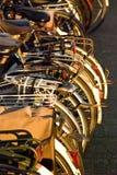 шкаф велосипедов Стоковая Фотография