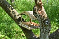 Шкаф корма для птицы Стоковое фото RF
