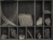 Шкаф любопытств Стоковые Фото