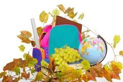 школа виноградин вспомогательного оборудования Стоковые Изображения RF