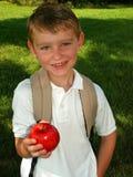школа заднего мальчика идя к Стоковая Фотография