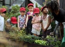 Школа учителя и детей уча садовничать экологичности стоковое изображение