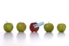 школа яблок Стоковая Фотография