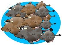 школа cowfish Стоковое Изображение