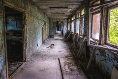 Школа в Pripyat Стоковое фото RF
