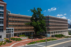 Школа зубоврачевания на холме UNC-часовни Стоковая Фотография RF