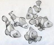 Школа рыб клоуна Стоковое Фото