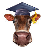 Школа фермы иллюстрация штока