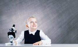 Школьное образование стоковая фотография