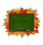 Школьное правление при изолированные кленовые листы Стоковые Фотографии RF
