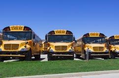 Школьные автобусы Стоковое Изображение RF