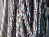 шланги Стоковые Фотографии RF