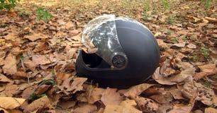 Шлем на листьях falled лесом Стоковое Изображение RF