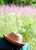 шлем поля Стоковые Изображения