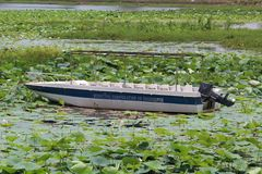 Шлюпка жила самостоятельно и покинутый в воде пруда Стоковое фото RF