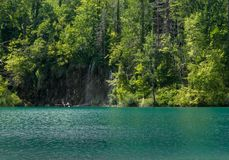 Шлюпка леса вида на озеро зеленая романтичная стоковые изображения