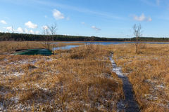 Шлюпка на банке marshy, озере осени стоковые фото