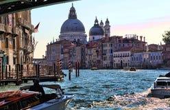 Шлюпка скорости под мостом Accademia в Венеции, Италии стоковые изображения