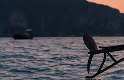 Шлюпка Longtail на заходе солнца Стоковые Изображения RF