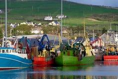 Шлюпки в гавани Dingle, Ирландии стоковое фото rf