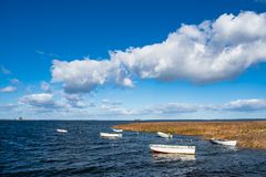 Шлюпки и тростники на Балтийском море в Дании стоковые фотографии rf
