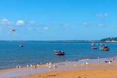 Шлюпки рыболовов на Индийском океане в Мапуту Мозамбике стоковое фото