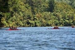 Шлюпки Rowing Стоковые Фото