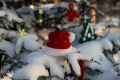Шляпа Санта Клауса на ветви дерева в снеге Стоковые Изображения