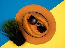Шляпа, солнечные очки и завод в баке стоковое изображение rf