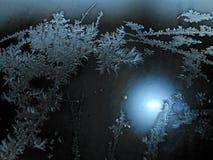 Шнурок зимы Стоковая Фотография RF