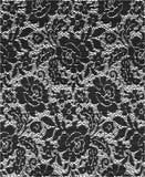 шнурок ткани Стоковые Изображения RF