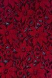 шнурок ткани Стоковое Изображение