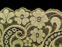 шнурок ecru полосы флористический Стоковые Изображения RF