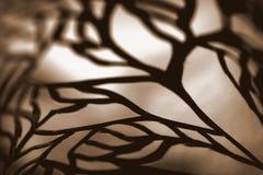 Шнурок Sepia абстрактный Стоковая Фотография RF