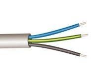 Шнур питания 3 проводов Стоковое Изображение RF