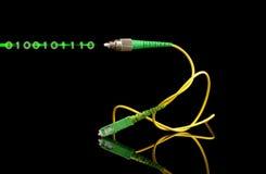 Шнур пути волоконной оптики и светлый цифровой сигнал Стоковое Изображение