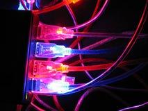шнур соединения компьютеров Стоковое фото RF