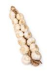 Шнур шариков чеснока Стоковая Фотография