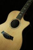 шнур 12 гитар Стоковые Фото