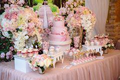 Шоколадный батончик и свадебный пирог Таблица с помадками, шведский стол с пирожными, конфетами, десертом Стоковое фото RF