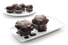Шоколады Брауна на плитах на белой предпосылке стоковые фотографии rf
