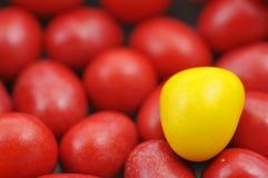 шоколады цветастые Стоковое фото RF