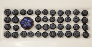 шоколад голубик Стоковые Изображения