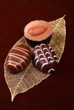 шоколад конфет Стоковое Изображение RF