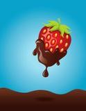 шоколад окунул клубнику Стоковое Фото