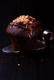 Шоколад булочки с гайками Стоковые Изображения