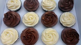 Шоколад и ванильные смешанные пирожные стоковая фотография rf